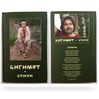 """БИГИМОТ """"СТИХИ 2"""""""